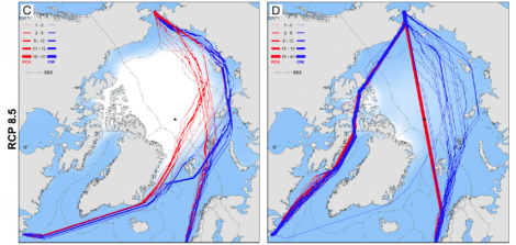 Transit routes for two kinds of ships (red and blue) with shrinking Arctic ice levels and opening of the Northwest Passage by 2050 (Image: Smith and Stephenson, PNAS, Early Edition)